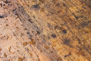 Drewniana podłoga i jej pielęgnacja